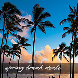 Spring Break Deals on Kauai Vacation Rentals