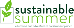 Sustainable Summer Logo Image