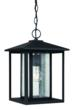 The new Hunnington outdoor pendant from Sea Gull Lighting