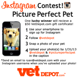VetDepot.com picture perfect pet instagram contest