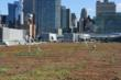 Xero Flor Green Roof on the Javits Center
