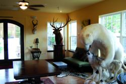 Wild Game Trophies greet visitors to Michael Gill Cellars