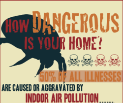 Indoor Air Quality - COIT Infogrphic