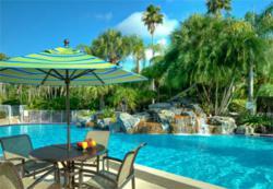 International Palms Hotel in Orlando