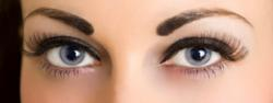 Eyebrow Shaping at Bella Reina Spa