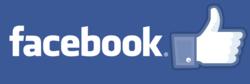 Facebook, changes, columns, tab design, soft launch