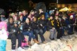 The crowd anxiously watches the mushers on the square in Jackson, Wyoming, at the start of the 2013 IPSSSDR (photo courtesy of Chris Havener)