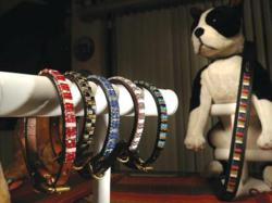Beautiful Pet Bling