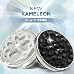 New Kameleon Jewelry No Shipping Image