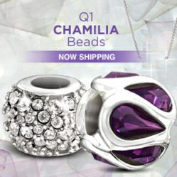 Image of New Chamilia Beads and Now Shipping SIgn
