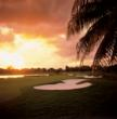 Trump Doral Miami - Golf Course