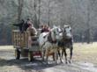 Bissell Maple Farm's Maple Madness Tour includes free horse-drawn wagon tours, food and entertainment - photo of ride