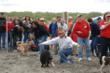 Doggie Olympic Games, dog show, dog-friendly, summer event, coast event, beach, Long Beach Peninsula, Washington, WA, outdoor events, canine