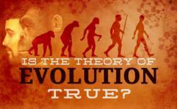New Infographic on Evolution