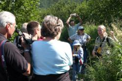 Chugach National Forest staff engaging visitors during a nature walk at the Byron Glacier Trail.