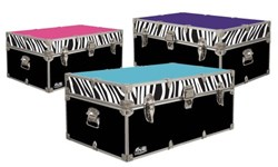 Zebra Stripe Trunk