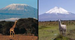Comparing the Kilimanjaro, Tanzania, and the Cotopaxi, Ecuador