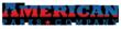 American Parks Company Logo