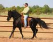 Boss' Midnight Cash Wins Missouri Fox Trotter 2012 Stallion of the...