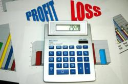 Business Plan Profit and Loss Statement