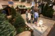 Landscaping at Cottage & Lakefront Living Show