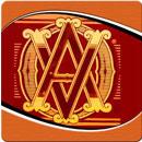 Buy Avo Cigars Online on Sale
