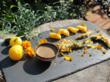 Vegetable Tempura in the Garden with Wapiscon Peach Tomatoes