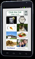 Mobile Optimized CAPTCHA