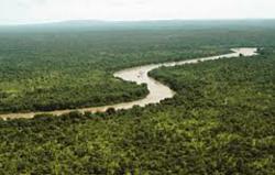 Environmental Research @ ScienceAlerts.com