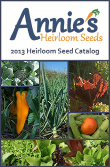 top 10 seed catalogs for the prepared gardener annieu0027s heirloom seeds mom with a
