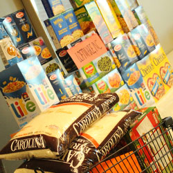 The first day of Loftware's food drive