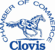 Clovis Chamber Small Business of the Year, Ad-Venture Video Productions Gives Back to Local Clovis Retailer