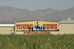 The Young Guns Produce facility in Hatch, New Mexico