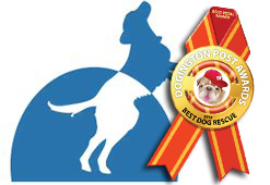 Dogington Post Announces National Mill Dog Rescue as Best Dog Rescue for 2012
