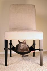 Cat Crib cat hammock, pet bed, cat furniture