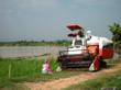 Rice combine in Cambodia