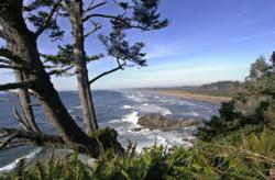 "Cape Disappointment, Washington, Ilwaco, Long Beach Peninsula, gray whale, washington whale watching, washington coast, Baja Peninsula, ""Whale Watching Spoken Here"""