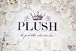 PLUSH Show 2013 Announces Their Official Platinum Sponsor, Baby Jogger