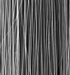 4SPIN -  uniaxially aligned nanofibers