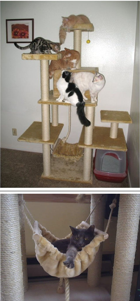 New Line Cat Furniture And Cat Trees At Cozycatfurniture Com