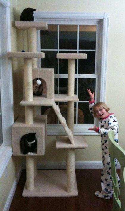 Diy hammock tree straps aji for Homemade cat tower