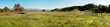 Expanse of open land in the Coyote Valley Open Space Preserve.