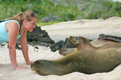 Galapagos-cruise-guest-sea-lion