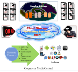 Cognosys MediaCentral Media Management
