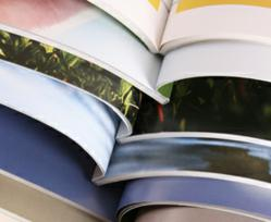 Print Brochures Stand Out in A Digital World