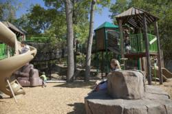 River Legacy Park Custom Playground in Arlington, Texas