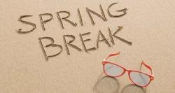 spring break home security tips - security system reviews