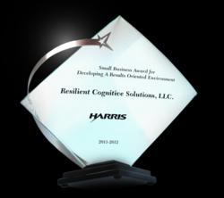 Small Business Award for Developing a Results Oriented Environment