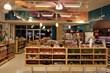 dog food, natural dog food, pet toys, modern dog, pet retailer, holistic dog, natural dog, retail, pet retailer