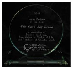 2012 Large Business of the Year Award